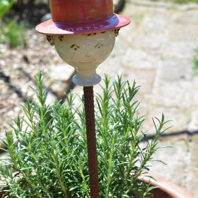 Kräuterzwerg Rosmarin, mit rotem Hut